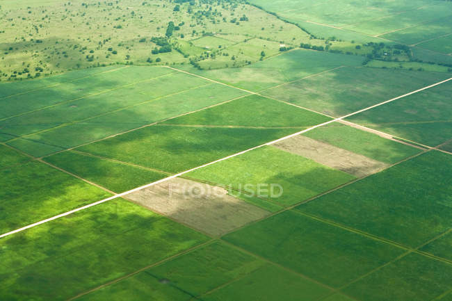 Aerial shot over fields, Dominican Republic — Stock Photo