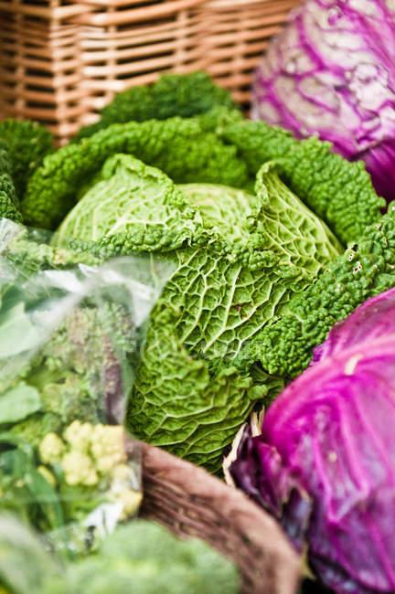 Blick auf frischem Kraut am Bauernmarkt — Stockfoto