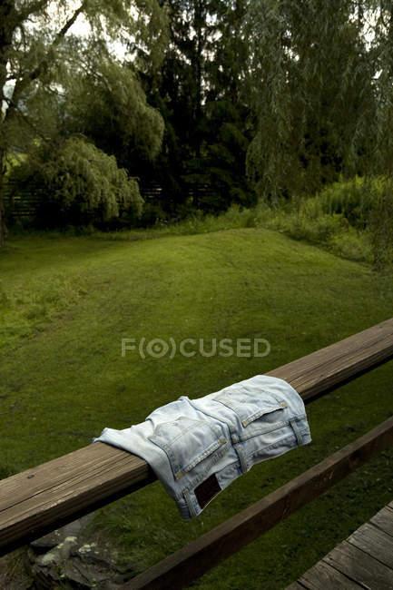 Jeansshorts auf hölzernen Schienen in der Nähe von Bäumen — Stockfoto