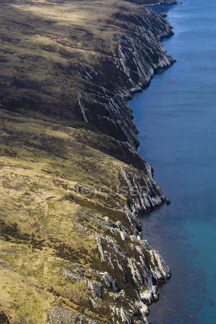 Пташиного польоту Західний острів, порт Stanley, Фолклендські Фолклендський, Південної Америки — стокове фото