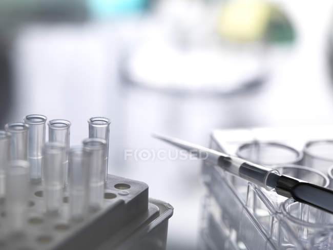 Pipette with tips and well plate awaiting an experiment in laboratory — Stock Photo