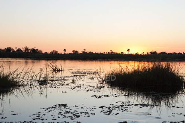 Nascer do sol na água no Okavango Delta, Botswana, África — Fotografia de Stock