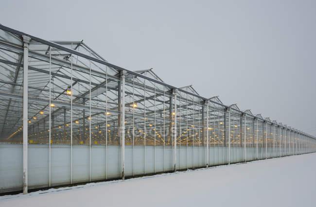 Serra con luci a LED, Made, Noord-Brabant, Paesi Bassi — Foto stock