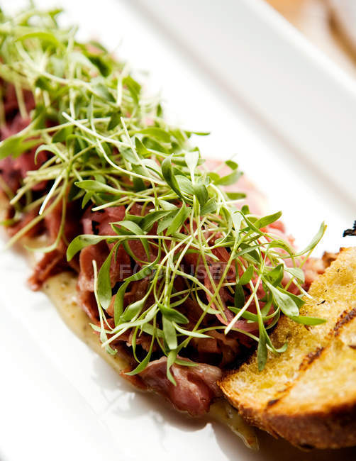 Lamb pastrami with salad on white plate — Stock Photo