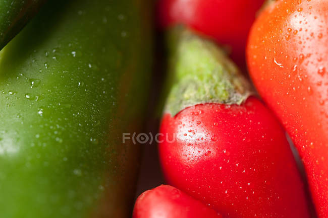 Close up Green and red chili peppers — Stock Photo