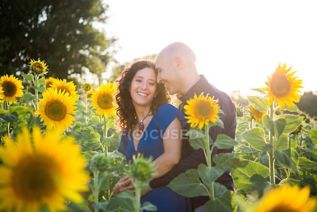 Пара, обнимая в поле подсолнухов — стоковое фото