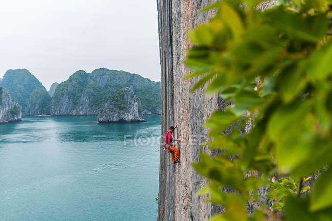 Vue latérale de l'alpiniste sur rocher calcaire, Ha Long Bay, Vietnam — Photo de stock
