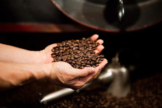 Hombre manos explotación café - foto de stock