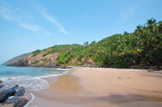 Spiaggia idilliaca di sabbia con palme e mare su resort, Goa, India — Foto stock