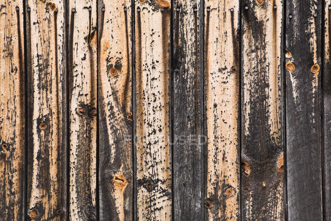 Paint peeling off wood texture, close up — Stock Photo