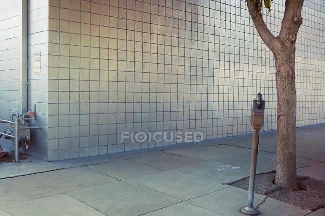 Trottoir urbain avec arbre et automate de stationnement le long mur gris — Photo de stock