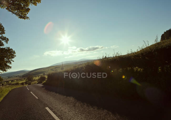View of country road at summer — Stock Photo