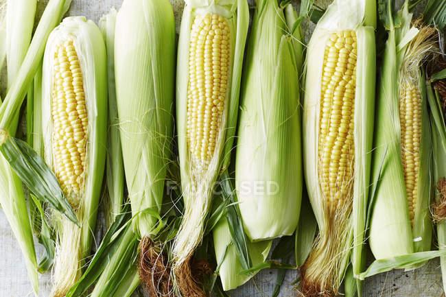 Vista superior de maíz dulce de maduro crudo fresco sobre mesa - foto de stock