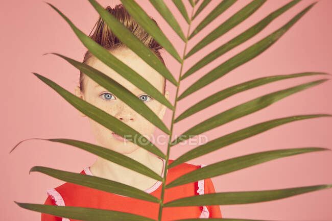 Портрет милой девушки, прячущейся за пальмовым листом, на розовом фоне, смотрящей в камеру, студию — стоковое фото