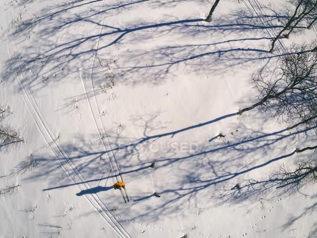 Vista ad alto angolo del paesaggio innevato e sciatore a Vasterbottens Lan, Svezia — Foto stock