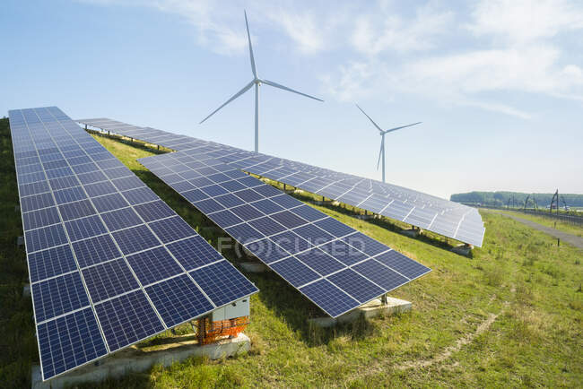 Sheep grazing near solar panels and wind turbine built on a former waste dump. — Stock Photo