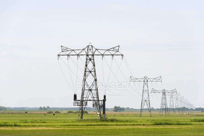 Power lines across fields in Overijssel, The Netherlands. — Fotografia de Stock
