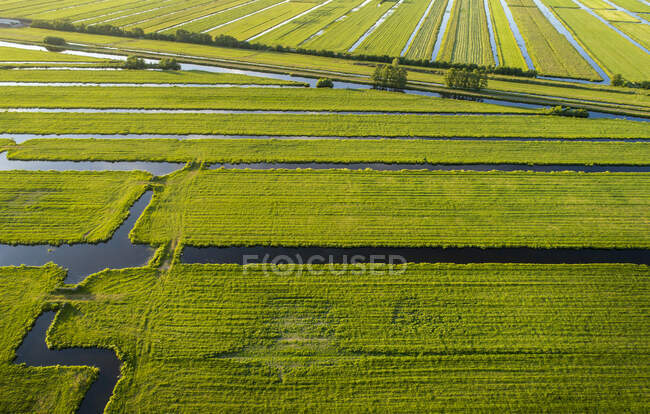 Aerial view of the polder landscape near Gouda, The Netherlands — Stock Photo
