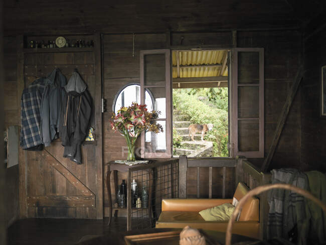 Old wooden coffee house on coffee farm in the Blue Mountains, Jamaica. — Stock Photo