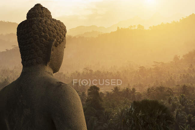 Buddha and forest, The Buddhist Temple of Borobudur, Java, Indonesia — Fotografia de Stock