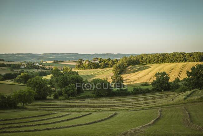 Landscape view, Prades, Midi Pyrenees, France — Stock Photo