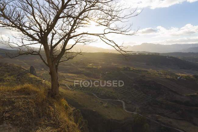 Escena rural, Ronda, España - foto de stock