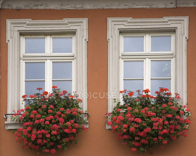 Windows decorated with flower boxes on old architectural style building facade, Schwetzingen, Germany — Stock Photo