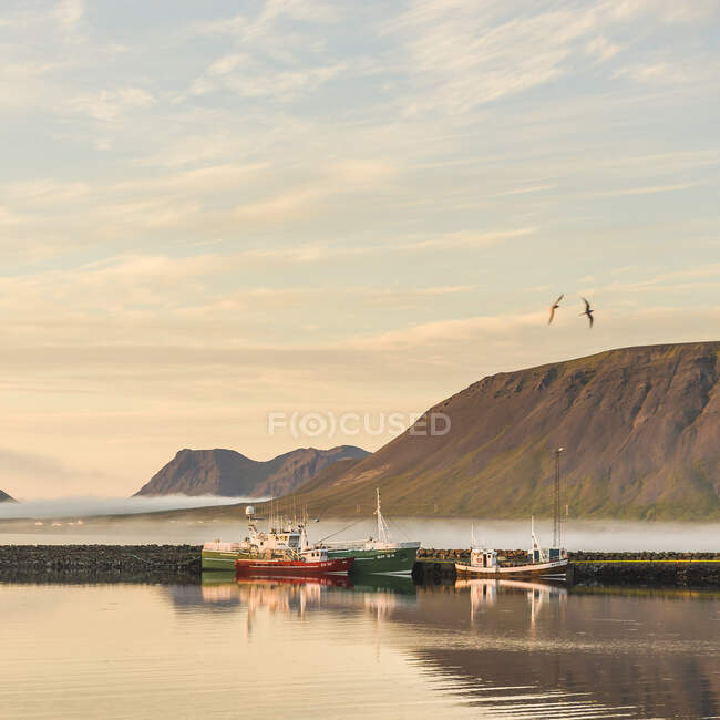 Moored fishing boats and birds flying over misty mountains — Stock Photo