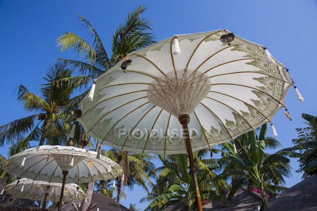 Білі пляжні парасольки і пальми, Gili Trawangan, Lombok — стокове фото