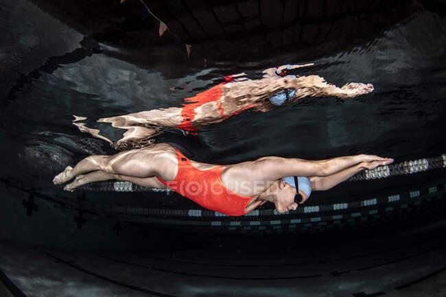 Nadador de elite universitário na piscina — Fotografia de Stock