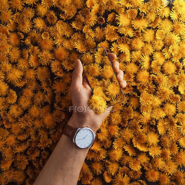 Рука с винтажные часы проведения смартфон — стоковое фото