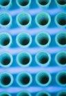 Primer plano de la bandeja de muestra multipocillo vacía . - foto de stock