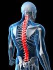 Dolor en la sección torácica de la columna vertebral - foto de stock