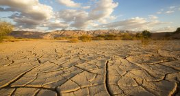 Parched ground in Aravah desert, Israel. — Stock Photo