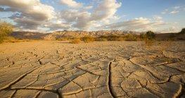 Sol desséché dans le désert de Aravah, Israël. — Photo de stock