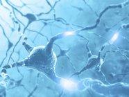 Red neuronal y axones - foto de stock