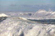 Grandes vagues, — Photo de stock