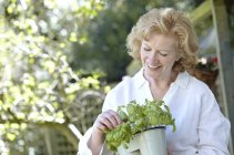 Mature woman holding potted plant in garden. — Stock Photo