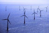 Wind turbines of windfarm in North Sea, England. — Stock Photo