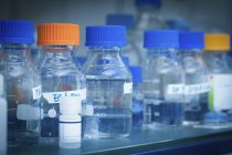 Laboratory bottles with fluids in laboratory. — Stock Photo