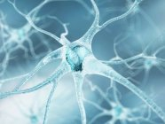 Células nerviosas y conexiones axónicas - foto de stock