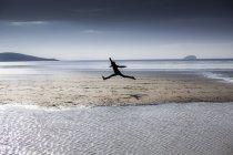 Silhueta de pessoa pulando na praia — Fotografia de Stock