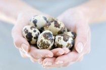 Donna che tiene le uova di quaglia — Foto stock