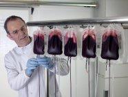 Doutor separando sangue de doador em sacos de sangue em partes componentes . — Fotografia de Stock