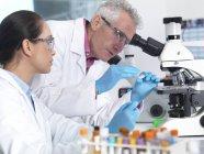 Scientifiques préparant diapositive en verre avec échantillon en laboratoire . — Photo de stock