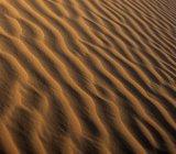Ripples in sand dune of desert in United Arab Emirates. — Stock Photo