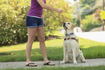 Visually impaired woman with her dog — Stock Photo