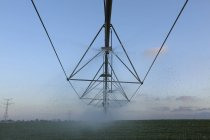 Campo irrigação de sistema de chuveiros automáticos — Fotografia de Stock