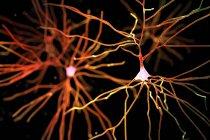 Ilustración digital de neuronas nerviosas células . - foto de stock