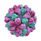 Ilustración digital del género Norovirus del virus ARN, primer plano . - foto de stock